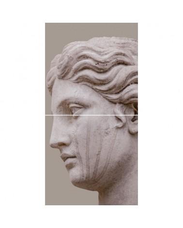 """Montage """"Venus"""" 2 carreaux"""