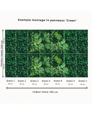 "Exemple de montage ""Panorama Green"""