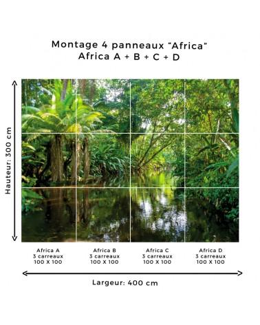 """Montage """"Africa"""" panneaux A/B/C/D"""